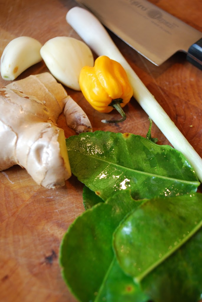 Friske krydderier til karrypasta - ingefær, hvidløg, chili, citrongræs og limeblade