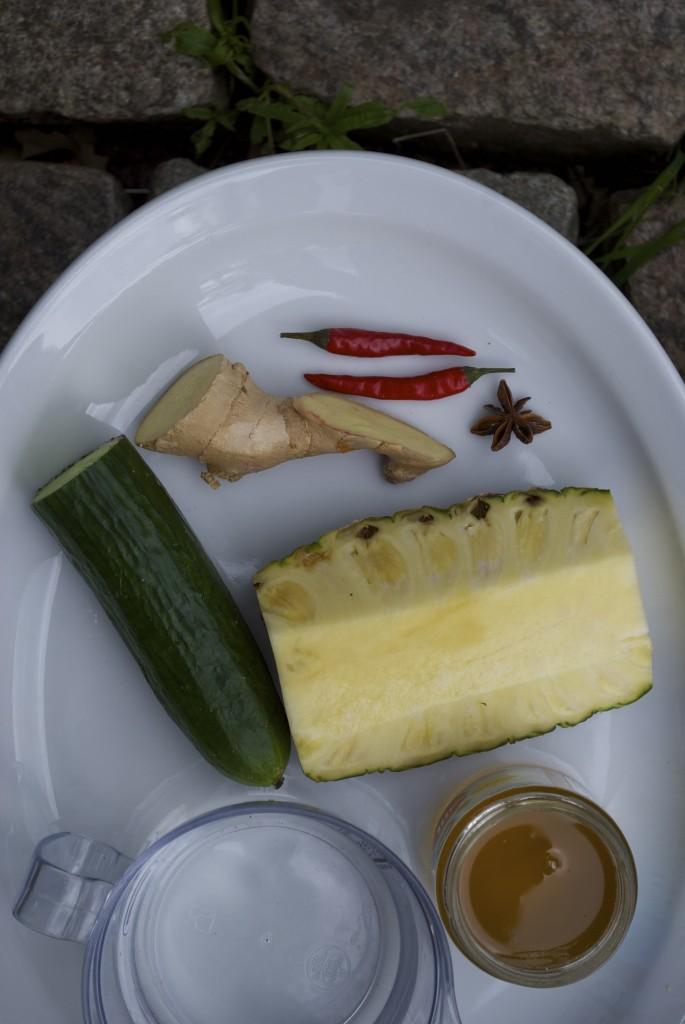 Blomsterhonning fra Bidronningen passer perfekt til en spicy agurkesalat. Prøv denne opskrift på rigtige satay med kylling.